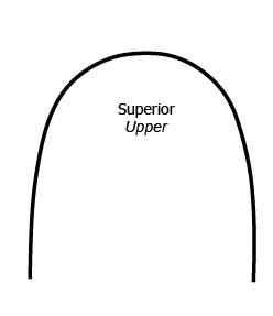 Arco NiTi Superelastico - Superior